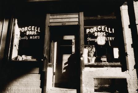 porcellibros1.jpg